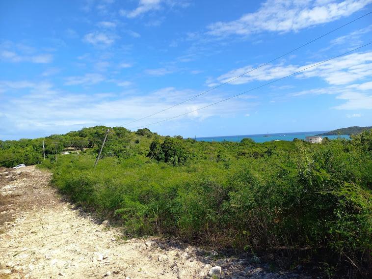 Browns Bay Land