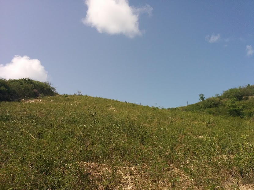 Land in Friars Hill