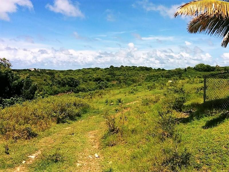 land for sale in glanvilles
