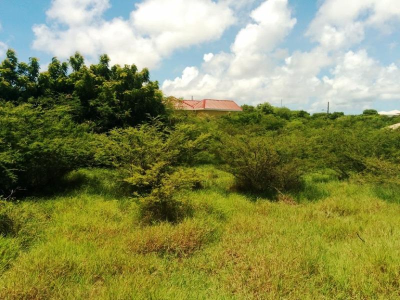 Glanvilles Land For Sale