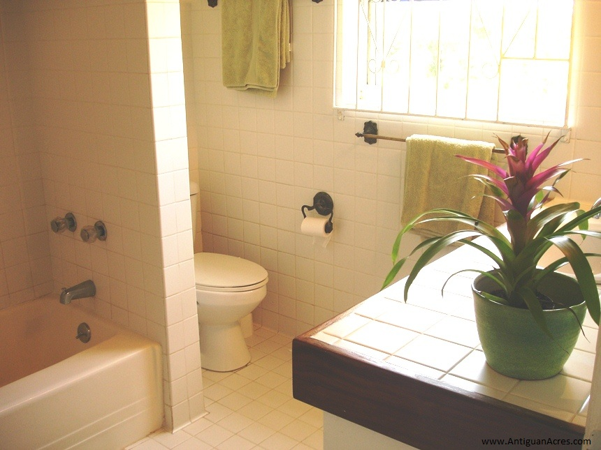 Bathroom in the Cottage
